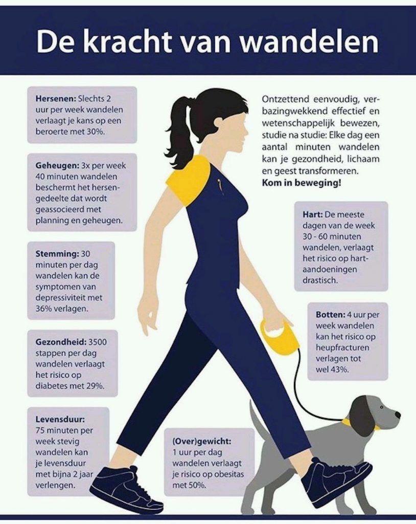 de kracht van mindful wandelen